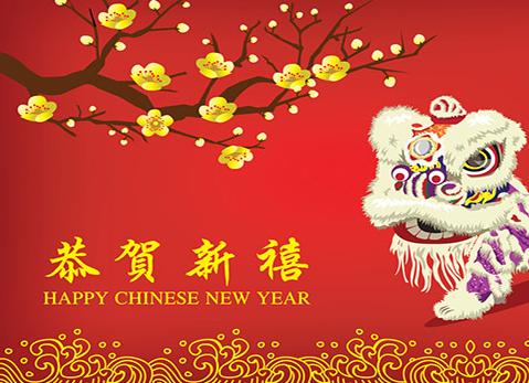 chinese new year celebration - Chinese New Years